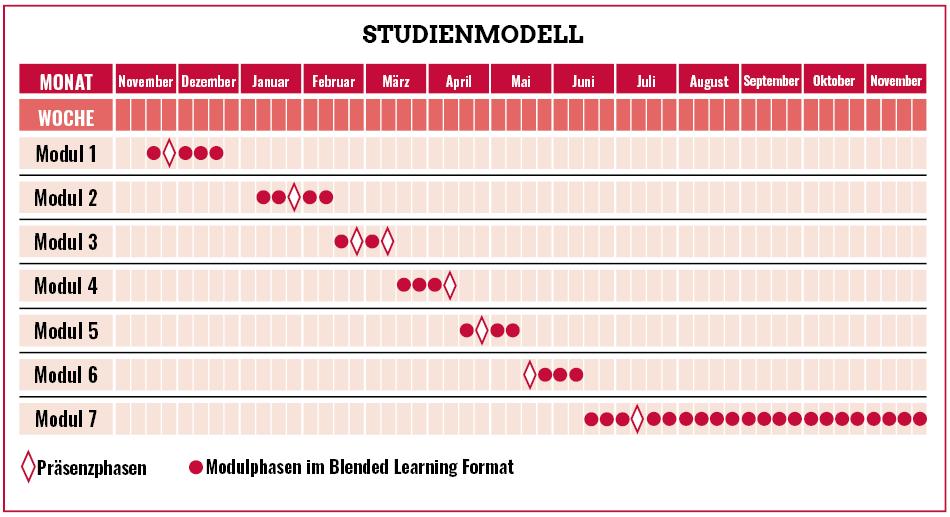 Ablaufplan Blended Learning im Blockmodell